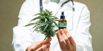 Kto przepisać może medyczną marihuanę?