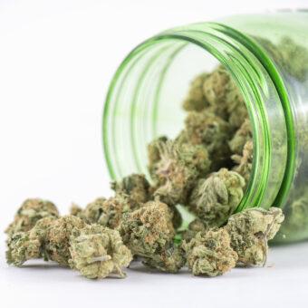Marihuana,postacie i sposoby zażywania